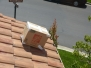 View From A Customer in Irvine CA | Roof Bee Removal