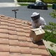 Bee Removal Irvine CA | Roof Bee Removal Irvine CA