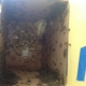 Laguna Hills Bee Removal | Drywall Bee Removal
