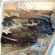 Bee Hives Killed by Bee Exterminators