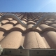 Temecula Valley Roof Bee Removal